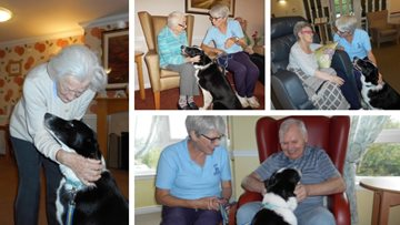 Ayr care home welcomes four legged friend