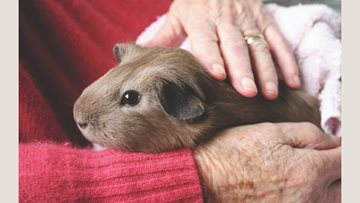 Pet Pals comes to Eastbourne care home