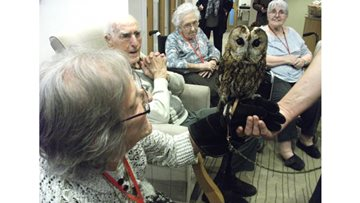 Eden House enjoy a visit from Joe's Owl Encounters