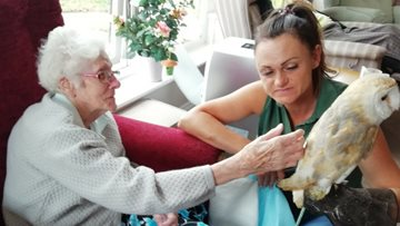 Owls make flying visit to Haslington care home