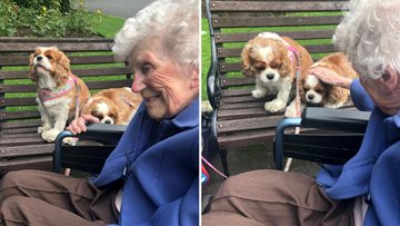 Retired canine show judge reminisces in Local Park