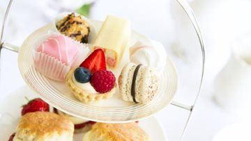 Join us for afternoon tea at Elmwood House care home in Boston