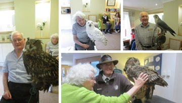 Guisborough care home enjoys flying visit from North Yorkshire Birds of Prey