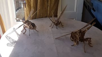 Giant bug day at Summerville home