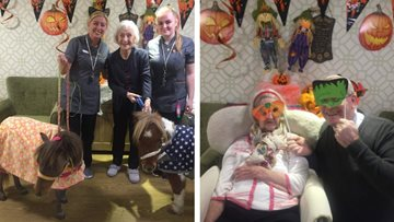 Halloween at Knowsley Manor
