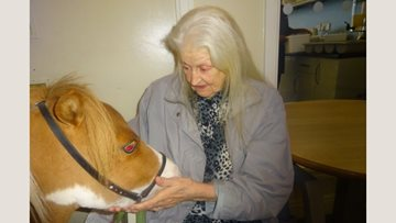 Averill House welcomes Therapy Ponies
