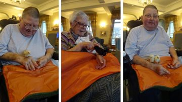 Chicks are chirping at Bexhill-on-Sea care home