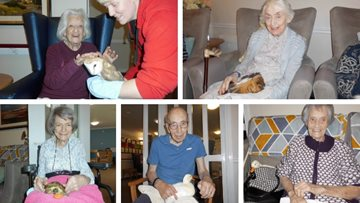 Feathered and furry friends visit Ayr care home