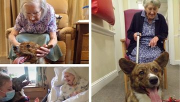 Middlesex care home joins in with World Dog Day