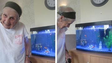 Swansea care home welcomes fish to their new tank