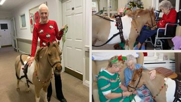 Penrith care home Residents enjoy festive visit from therapy pony