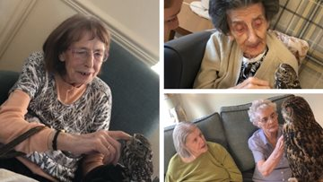 Flying visit from feathered friends at Dukinfield care home