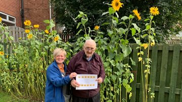 Rotherham care home unveils winner of annual sunflower competition