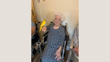 Braintree care home Residents enjoy animal interaction