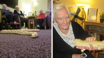 Christmas creepy crawly visitors Dundee care home