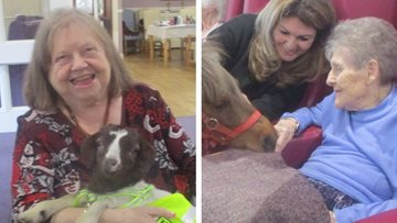 Animal therapy at St Helens care home