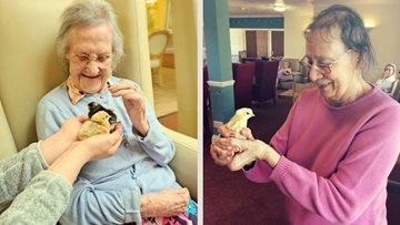 Hailsham care home team up with 'Incredible Eggs' for Easter
