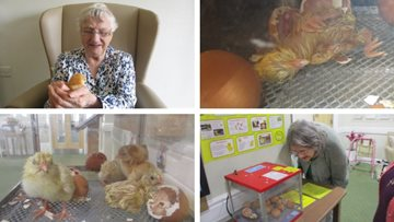 Feathery new additions at Cramlington care home