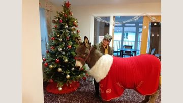 Furry friend visits East Grinstead care home