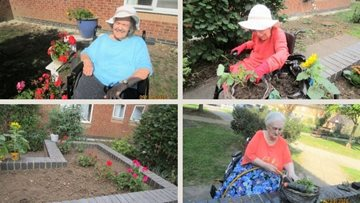 Ilford care home Residents go green fingers for gardening competition