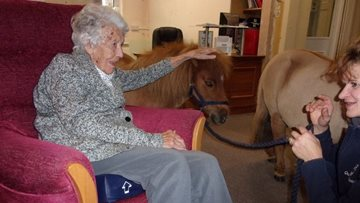 Horse-ing around at Evercreech care home