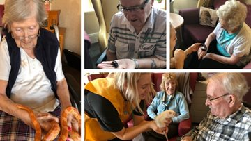 Zoo Lab visit Poulton-le-Fylde care home