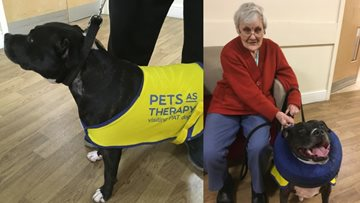 Resident forms bond with therapy dog