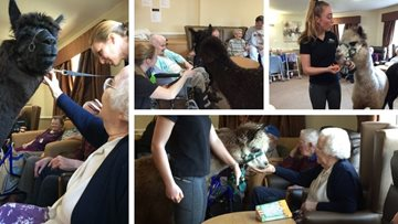 Residents welcome adorable furry friends to Carlton care home