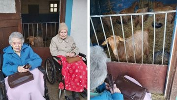 Fun at the farm for Sheffield care home Residents