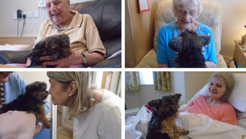 Therapy dog Daisy visits Hornchurch care home