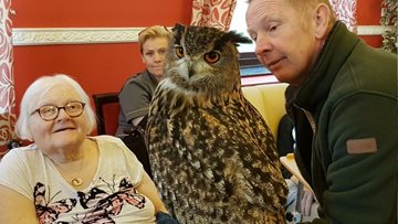 Pendleton Court enjoy Birds of Prey Display