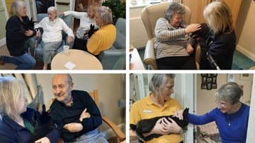 Hull care home makes new furry friends for animal therapy