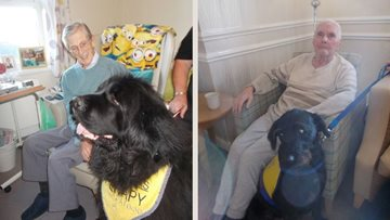 Therapy dogs delight at Durham care home