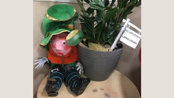 Silverwood Residents get crafty for St Patrick's Day