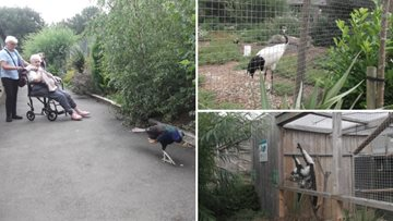 Residents enjoy a trip to Kirkley Hall Zoological Gardens