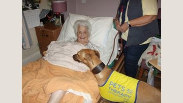 Bridport care home welcome new furry friend