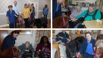 Residents welcome four-legged friends to Sherwood care home