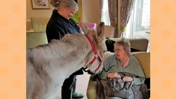 Donkey Therapy for Avalon Park