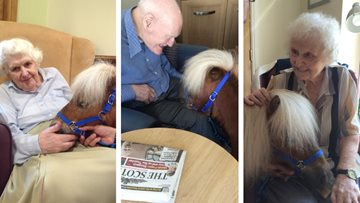 Therapy ponies visit Edinburgh care home