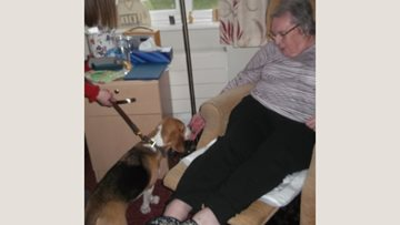 Four legged visitor at Congleton care home
