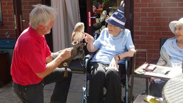 Birds of Prey Delight Willow Court Residents