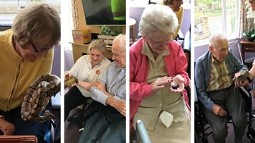 Exotic visitors at Barnard Castle care home