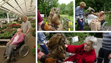 Chandler's Ford Residents have a hoot at Brambridge Falconry