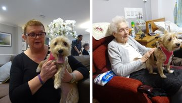 Therapy dog brings joy to Residents at Cambridge care home