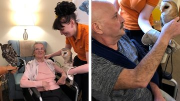 Residents have a hoot as feathered friends visit Grimsby care home