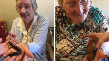 Creepy crawlies visit Burntwood care home