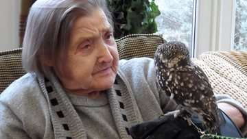 Owl Visit at Greatwood House Care Home