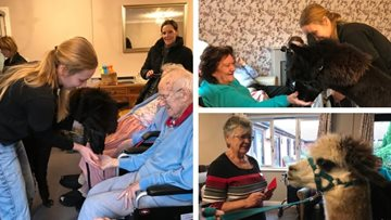 Adorable duo make a visit to Cherry Willingham care home