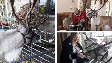 Belper care home receives visit from festive furry friend
