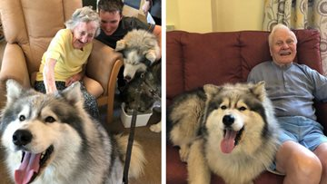 "Residents benefit from ""Husky"" Therapy"